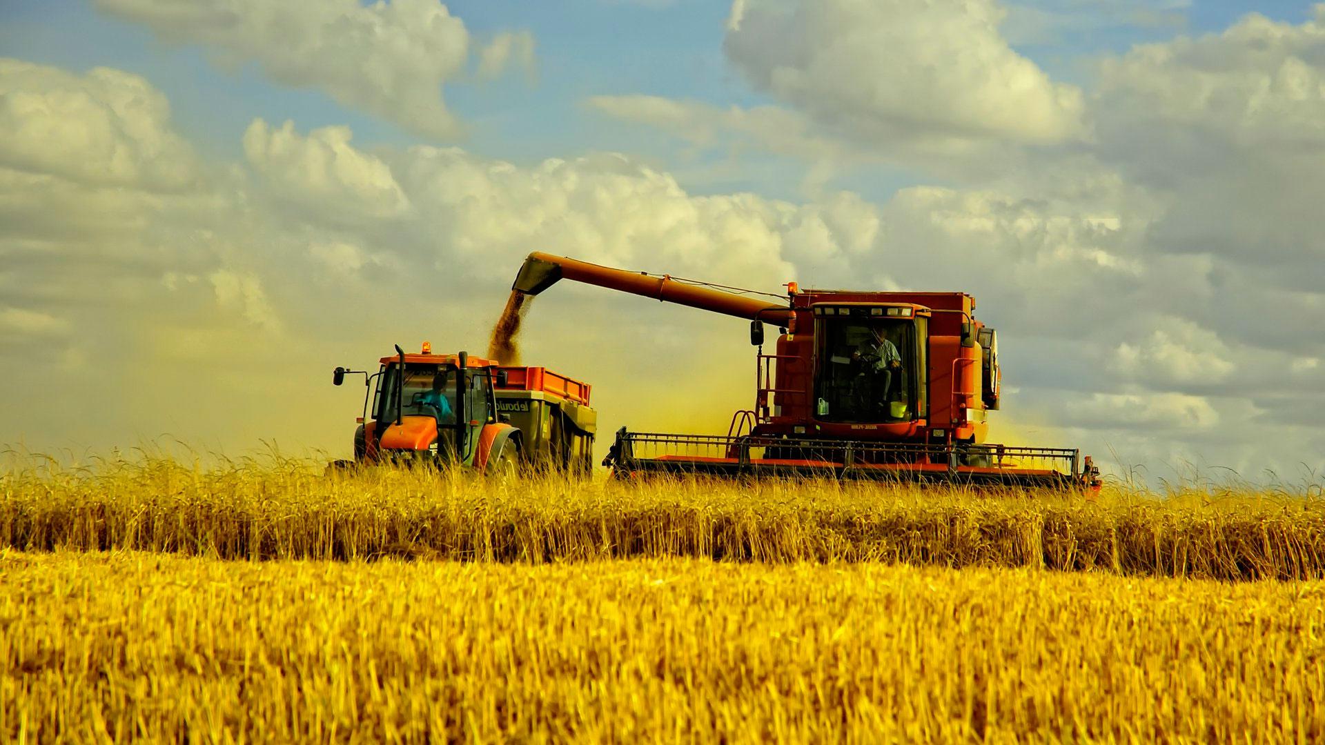 """Результат пошуку зображень за запитом """"експорт агропродукція"""""""