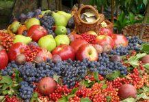 плодово-ягідна продукція