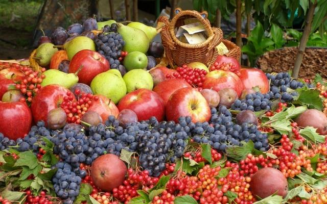 плодово-ягодная продукция