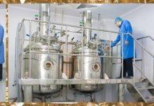 Київський вітамінний завод