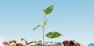 мусора экология