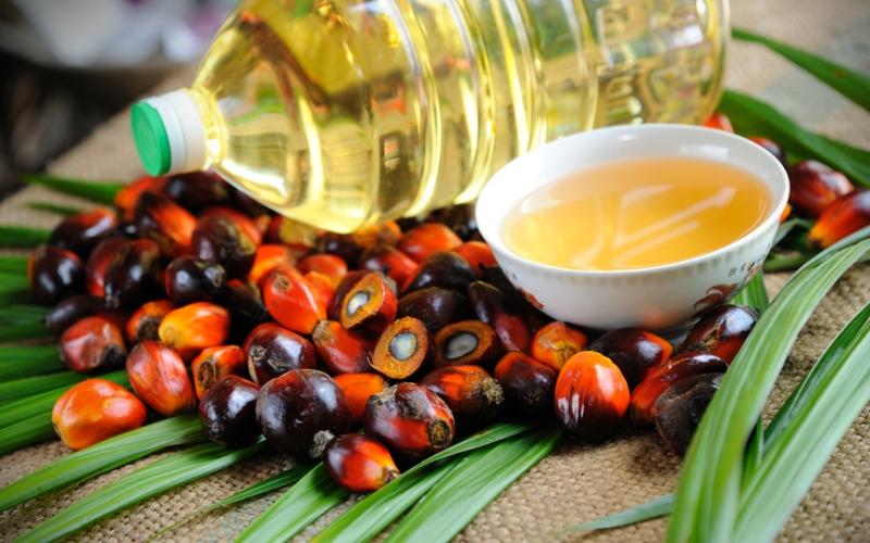 пальмове масло